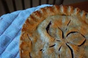 Blueberry Pie for a guest, picked ourselves a week previously...